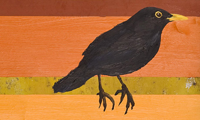 13 Ways to Look at a Blackbird: the other 12 are coming